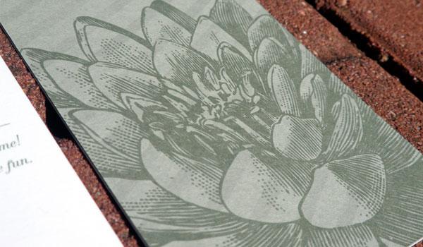 Oversize Flower Illustrations
