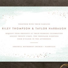 Watercolor Wash Wedding Invitations by Jessica Williams